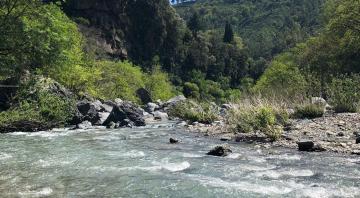 Etna y Gargantas del Alcantara